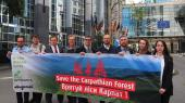 Forest Carpathians: Bruno Manser Fonds lobbies in Brussels