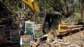 Mulu logging continues despite protests